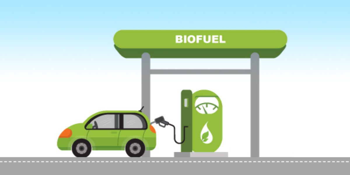 Business potential opportunity for ASEAN Biofuels